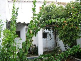 Village house garden arriate ronda - Arriate plantas ...